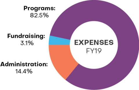 Breakdown of expenses for fiscal year 2019