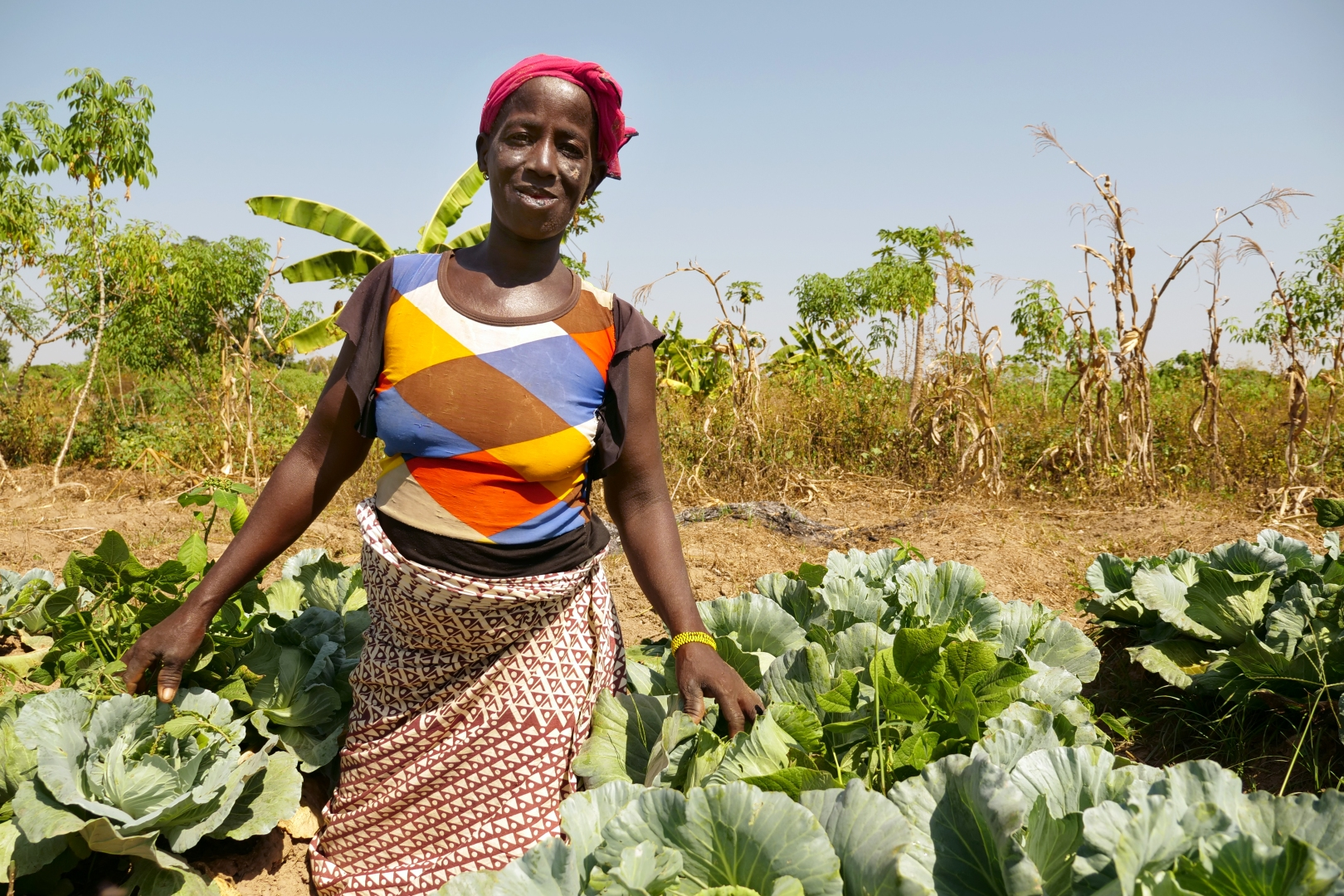 Mariam Tio inspecting her plot of cabbage
